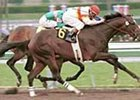 Millennium Wind, winning the Santa Catalina Stakes.