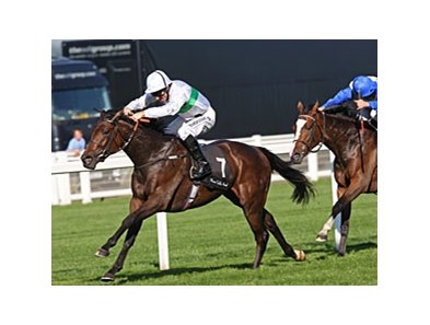 Rainbow View dominates the Meon Valley Stud Fillies' Mile at Ascot.