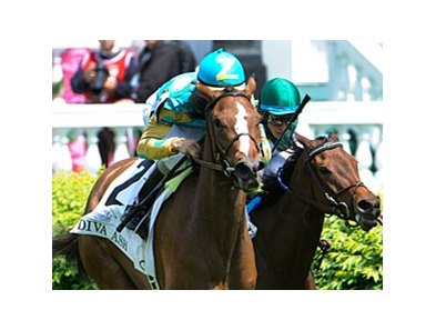 "Diva Ash shows the way in the Edgewood Stakes.<br><a target=""blank"" href=""http://www.bloodhorse.com/horse-racing/photo-store?ref=http%3A%2F%2Fpictopia.com%2Fperl%2Fgal%3Fprovider_id%3D368%26ptp_photo_id%3D9516615%26ref%3Dstory"">Order This Photo</a>"