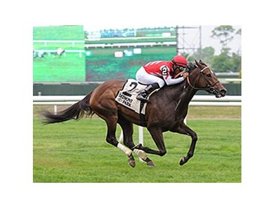 "Celestine has won 4 straight races.<br><a target=""blank"" href=""http://photos.bloodhorse.com/AtTheRaces-1/At-the-Races-2015/i-Q2BZCD8"">Order This Photo</a>"