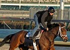 Pletcher Works Five BC Hopefuls at Churchill