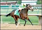 Allamerican Bertie, shown winning the Falls City Handicap, has been retired.