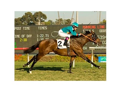 "Mr. Rod leaves them all behind in the Generous Stakes.<br><a target=""blank"" href=""http://www.bloodhorse.com/horse-racing/photo-store?ref=http%3A%2F%2Fpictopia.com%2Fperl%2Fgal%3Fprovider_id%3D368%26ptp_photo_id%3D6899108%26ref%3Dstory"">Order This Photo</a>"