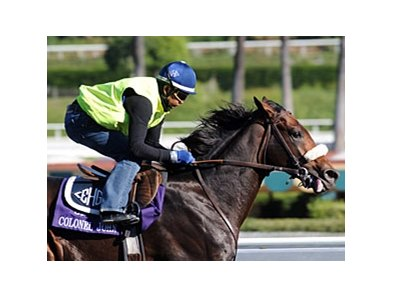 "Colonel John will stand at WinStar Farm.<br><a target=""blank"" href=""http://www.bloodhorse.com/horse-racing/photo-store?ref=http%3A%2F%2Fpictopia.com%2Fperl%2Fgal%3Fprovider_id%3D368%26ptp_photo_id%3D8620404%26ref%3Dstory"">Order This Photo</a>"