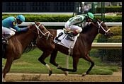 Churchill Downs Race Report (Cont.)