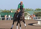 "Sweet Ducky<br><a target=""blank"" href=""http://www.bloodhorse.com/horse-racing/photo-store?ref=http%3A%2F%2Fpictopia.com%2Fperl%2Fgal%3Fprovider_id%3D368%26ptp_photo_id%3D9448503%26ref%3Dstory"">Order This Photo</a>"