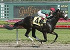 Eurosilver Victorious in 3-Year-old Debut at Gulfstream