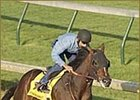 Atswhatimtalknbout Works Well in Blinkers; Rider Named for Scrimshaw