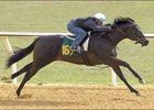 A Johannesburg colt worked an eighth of a mile in :10 during final OBS under tack show.