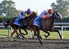 Stephanie's Kitten won the 2011 Darley Alcibiades Stakes, at the 1 1/16-mile Ashland distance.