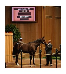 Hip 43 sold for $875,000 at the Keeneland September Sale.