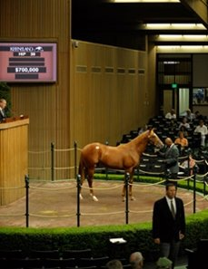Hip No. 39, a Speightstown colt consigned by Dromoland Farm, sold for $700,000 during the first session of the Keeneland September yearling sale.
