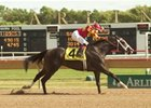 Happy Ticket, seen here winning the Chicago Breeders' Cup Handicap at Arlington Park in 2005, died May 3.
