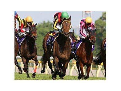 "Buena Vista got past Hikaru Amaranthus to register a neck victory in the Victoria Mile at Tokyo Racecourse.<br><a target=""blank"" href=""http://www.bloodhorse.com/horse-racing/photo-store?ref=http%3A%2F%2Fpictopia.com%2Fperl%2Fgal%3Fprovider_id%3D368%26ptp_photo_id%3D8960009%26ref%3Dstory"">Order This Photo</a>"
