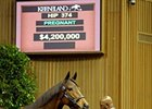 Changing Skies brought $4.2 million during the Keeneland November breeding stock sale.