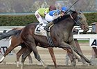 Effinex wins the Excelsior Stakes.