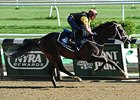 Mubtaahij (IRE) gallops at Belmont Park May 24.