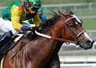 2009 Breeders' Cup Sprint winner Dancing in Silks faces Bob Black Jack in the San Carlos Handicap.