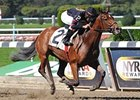 "Awesome Feather won the Le Slew Stakes at Belmont Park on Oct. 5.<br><a target=""blank"" href=""http://www.bloodhorse.com/horse-racing/photo-store?ref=http%3A%2F%2Fpictopia.com%2Fperl%2Fgal%3Fprovider_id%3D368%26ptp_photo_id%3D9694075%26ref%3Dstory"">Order This Photo</a>"