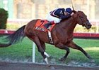 Richter Scale, ridden by Richard Migliore, shown here winning the 2000 Gulfstream Park Breeders' Cup Sprint Championship.