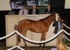 Barretts' first Del Mar sale was held last May