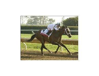 Ashland Stakes winner Sis City faces seven other 3-year-old fillies in the Delaware Oaks.