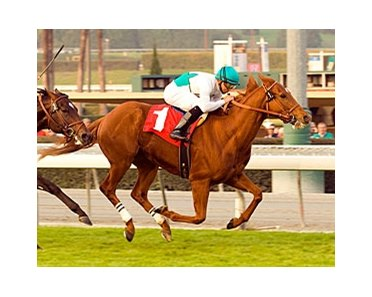 "Daytona runs away with the San Gabriel.<br><a target=""blank"" href=""http://www.bloodhorse.com/horse-racing/photo-store?ref=http%3A%2F%2Fpictopia.com%2Fperl%2Fgal%3Fprovider_id%3D368%26ptp_photo_id%3D3165132%26ref%3Dstory"">Order This Photo</a>"