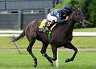 Gozzip Girl Will Pass Breeders' Cup