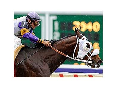 Actin Good winning the Pegasus (gr. III) at Monmouth Park on Breeders' Cup Day