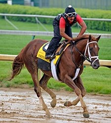 Haskin's Derby Report: Sad Morning at CD