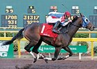 Brass Hat will likely miss the remainder of the 2008 racing season due to a suspensory injury.