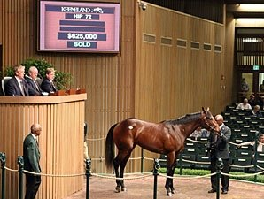 Pinhookers' Fortunes Improve at Keeneland