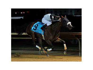 Strike the Moon won the Charles Town Oaks in her most recent start.