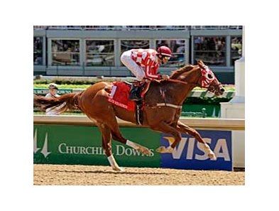 "Churchill Downs Stakes winner Elite Squadron is co-high weight in the Triple Bend.<br><a target=""blank"" href=""http://www.bloodhorse.com/horse-racing/photo-store?ref=http%3A%2F%2Fpictopia.com%2Fperl%2Fgal%3Fprovider_id%3D368%26ptp_photo_id%3D4387602%26ref%3Dstory"">Order This Photo</a>"