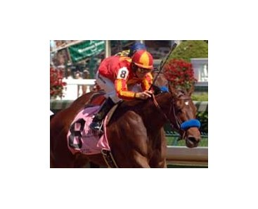 Pussycat Doll wins Humana Distaff.