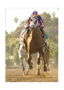 "Rags to Riches wins the Santa Anita Oaks.<br><a target=""blank"" href=""http://www.bloodhorse.com/horse-racing/photo-store?ref=http%3A%2F%2Fpictopia.com%2Fperl%2Fgal%3Fprovider_id%3D368%26ptp_photo_id%3D869365%26ref%3Dstory"">Order This Photo</a>"