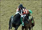 Afleet Alex, right, collides with Scrappy T at the top of the stretch, but recovered to win the Preakness Stakes.