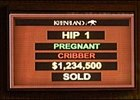 New Keeneland tote board unveiled as September sale begins.