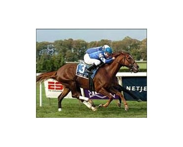 "Ashkal Way takes Kelso Breeders' Cup at the wire.<br><a target=""blank"" href=""http://www.bloodhorse.com/horse-racing/photo-store?ref=http%3A%2F%2Fpictopia.com%2Fperl%2Fgal%3Fgallery_id%3D6823%26process%3Dgallery%26provider_id%3D368%26ptp_photo_id%3D576686%26sequencenum%3D%26page%3D"">Order This Photo</a>"