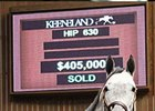 Hip 630 sold for $405,000 at the Keeneland January Sale.