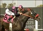 Lava Man and Corey Nakatani win the Charles Whittingham Memorial Handicap, Saturday at Hollywood Park.