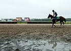 Belmont Stakes Day begins grey and wet.