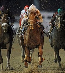 Drosselmeyer Retired, to Stand at WinStar