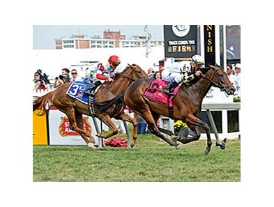 Watsdachances