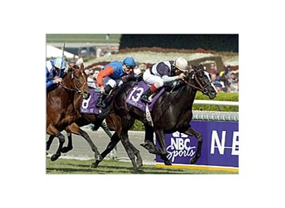 Six Perfections will be seeking to add her name to the list of repeat winners in the Breeders' Cup Mile.