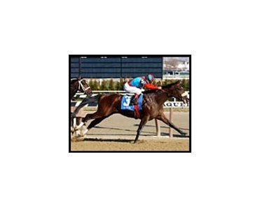 Sunday Break, winning an allowance race at Aqueduct Wednesday.