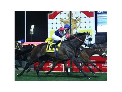 South Africa's 4-year-old Jay Peg sets a new course record as he fights back challenges to win the Dubai Duty Free.