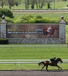 Keeneland Juvenile Sale Has Good Vibes