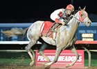 Headache Finds Relief in Cornhusker Triumph