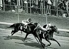 Seattle Slew wins the 1977 Kentucky Derby.
